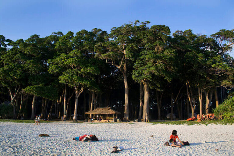 The top places to See at Havelock Island:
