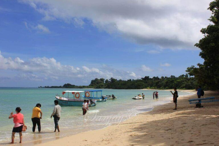 Neil Island Andaman: Attractions, Places to Visit & Things to do