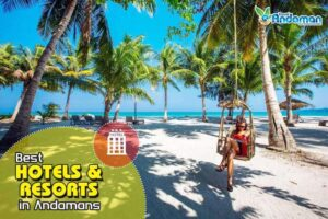 Best Hotels and Resorts in Andaman